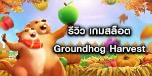 รีวิว-เกมสล็อต-Groundhog-Harvest-ใหม่ล่าสุด-min
