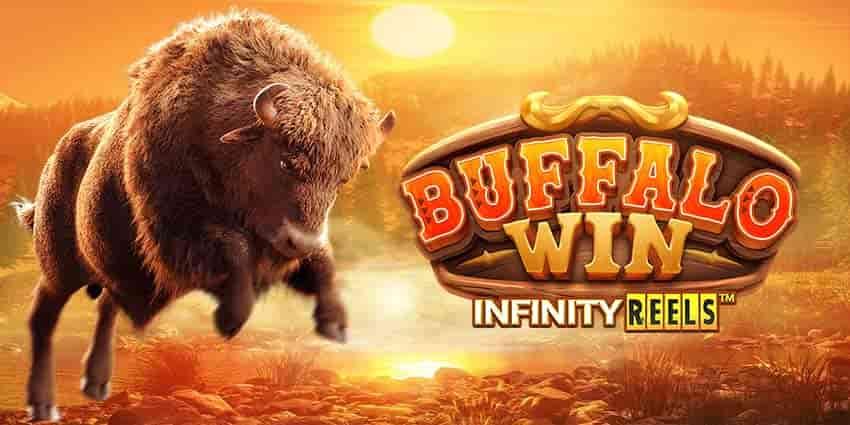 Buffalo-win-min